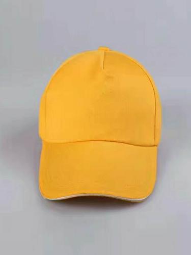 帽子系列(9)